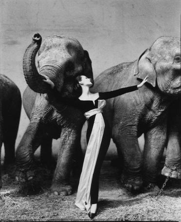 Photograph by Richard Avedon